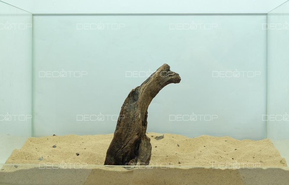 DECOTOP Borneo 591 - Натуральная коряга для аквариумов от 20 литров, 19х6х6 см